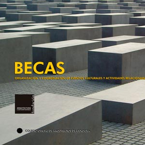BECA DE FORMACIÓN-INVESTIGACIÓN 2009