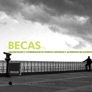 BECA DE FORMACIÓN-INVESTIGACIÓN 2007