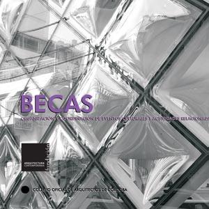 BECA DE FORMACIÓN-INVESTIGACIÓN 2008