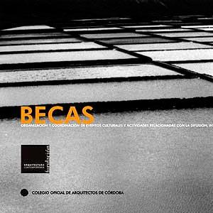 BECA DE FORMACIÓN-INVESTIGACIÓN 2005